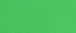 LINING - Apple Green.jpg
