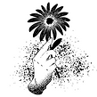 Logo of a hand holding a black flower