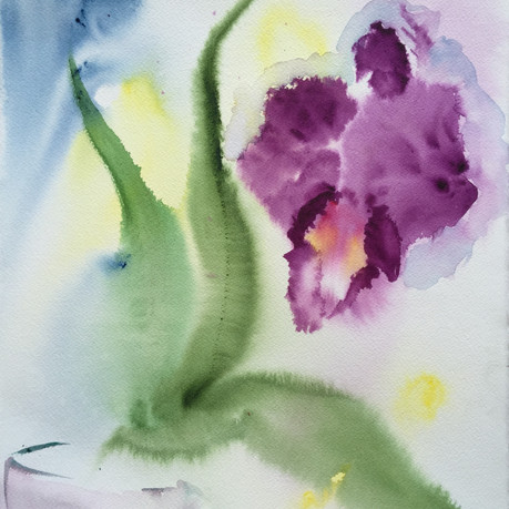 Orchid Float