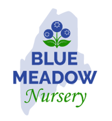 logo-3-with-blueberry-illustration.png
