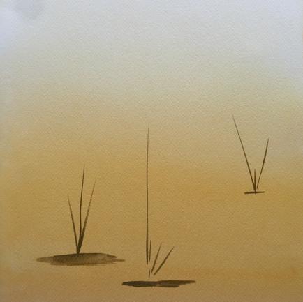 Golden Pond 1