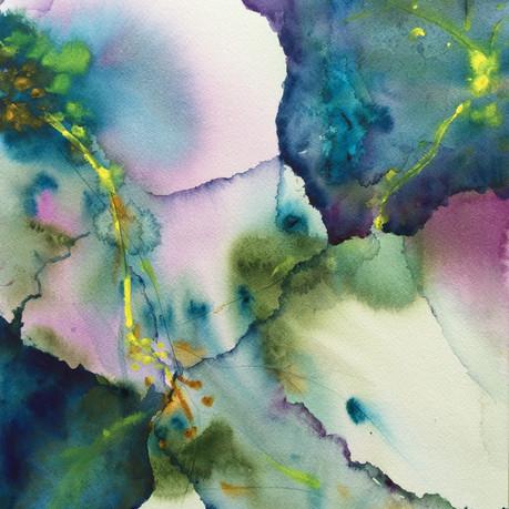 Hibiscus Dream 2