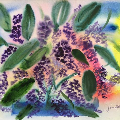 Lilac Fantastic