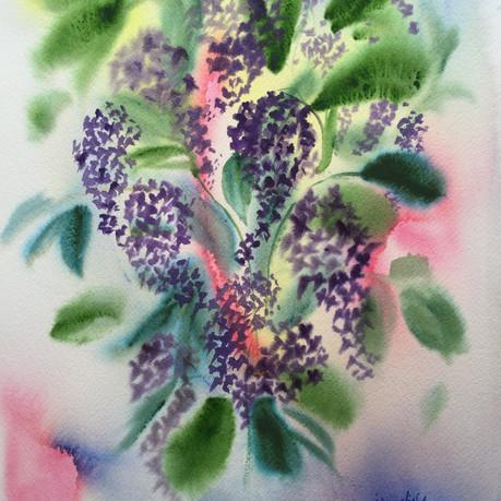 Lilac Tumble