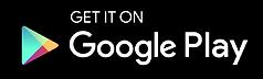 Google 2 copia 2.png