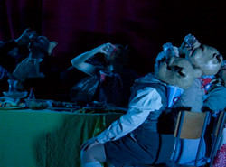 Mid Wales Opera, Albert Herring 2013