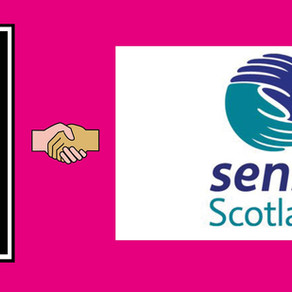 Luna & Sense Scotland Flash Competition's Winners