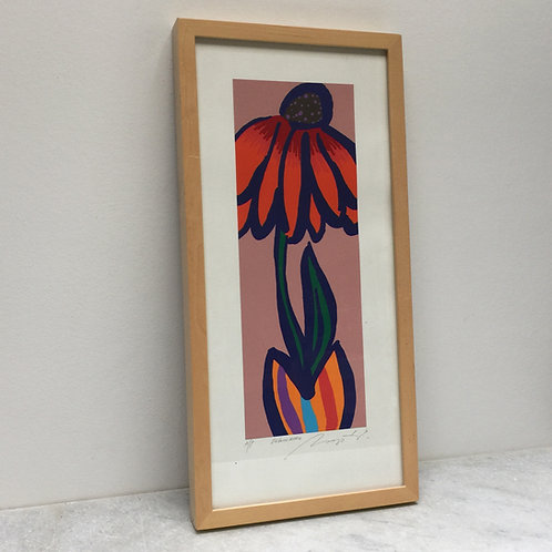 'Echinacea' By Gerry Baptist
