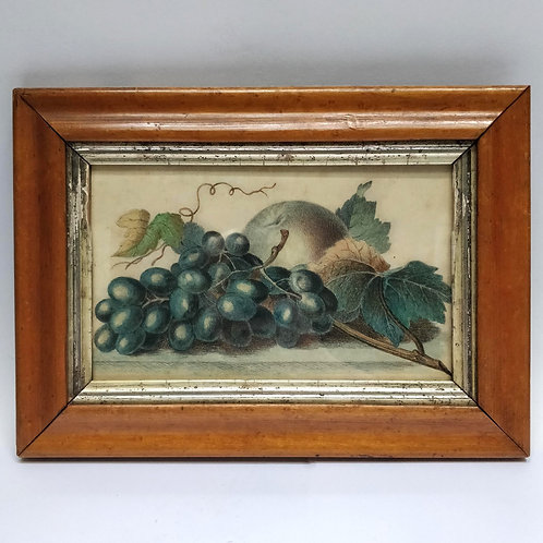 Pencil And Crayon Drawing Still Life Of Fruit Dated 1861