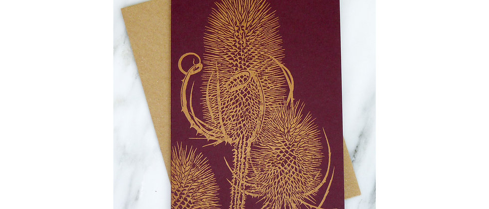 Teasel - Multiple