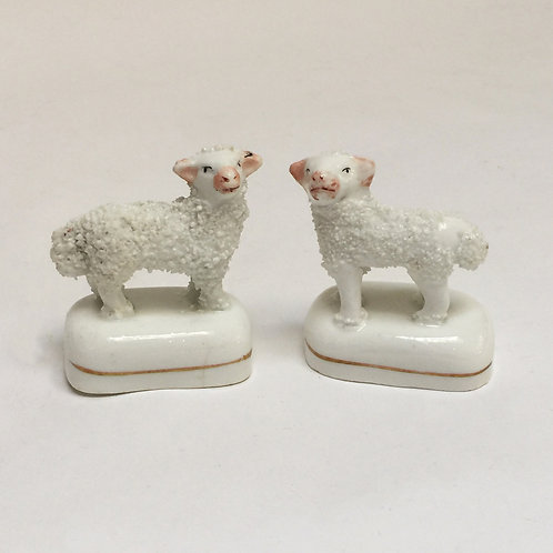 Tiny Pair Of 19th Century Staffordshire Lambs