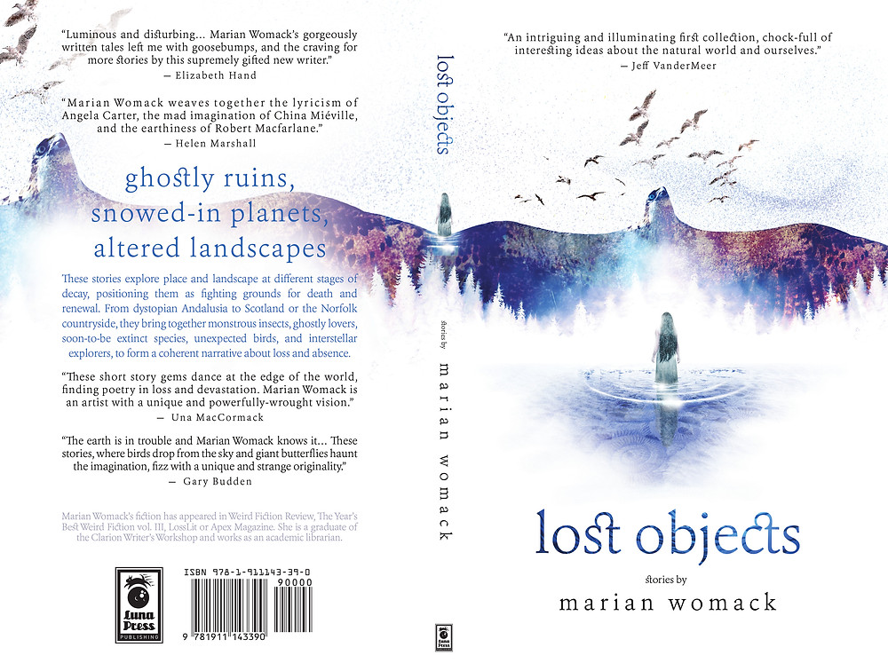 """Lost Objects"" by Marian Womack. Cover art by Vince Haig"