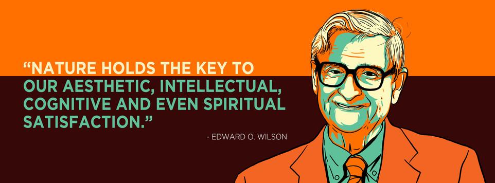 Edward O Wilson