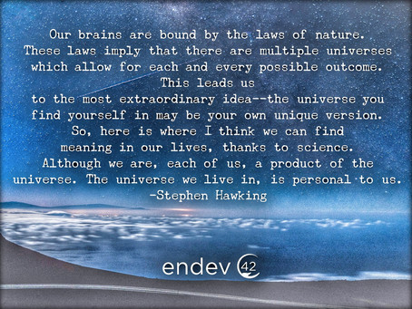 Stephen Hawking's Thoughts on the Meaning of Life