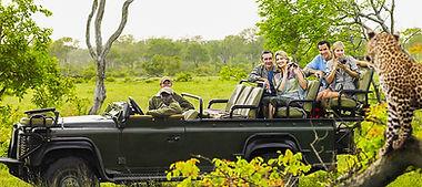 Un-safari-en-Afrique-du-Sud.jpg
