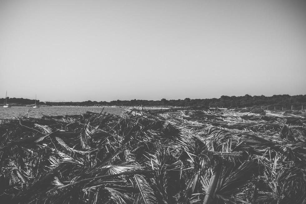 Pablo Sabater Photo nature-landscape