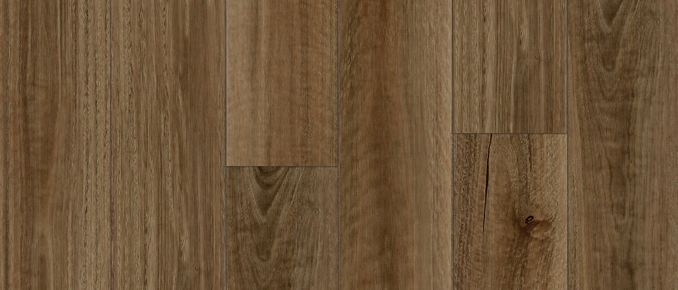 6.5MM HYBRID QLD Spotted Gum