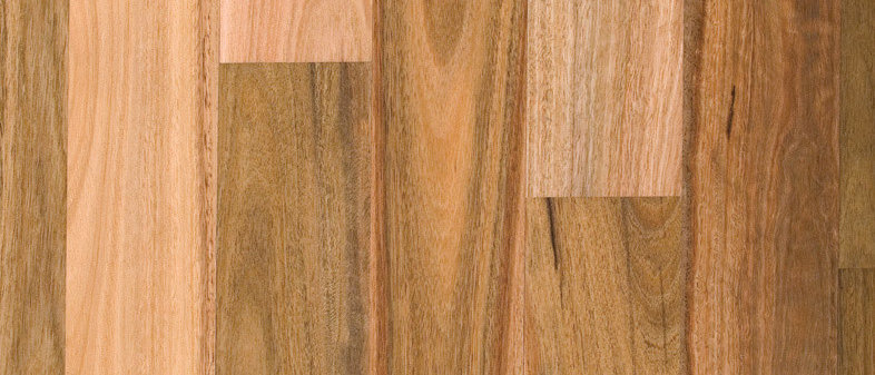 Pre-Finished Solid Timber Spotted Gum