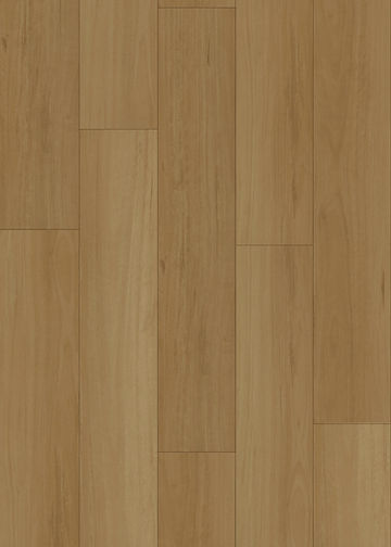 HYB-91201 Coastal Blackbutt L.jpg