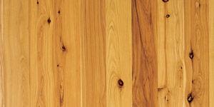 cypress-pine.jpg