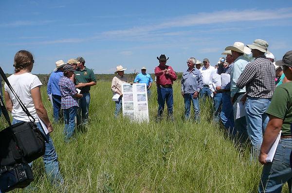 Tom demonstrating regenerative grazing methods to group of ranchers