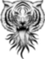 branding-tiger_2x_edited.png