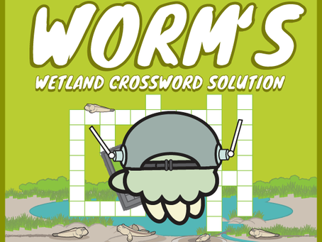 Worm's Wetland Crossword Challenge Answers