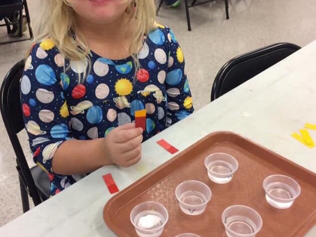 Monthly Labs at the Houston Museum of Natural Science