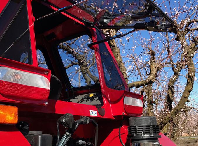 Case 120C SBM Orchard Cab Rear Win.jpg