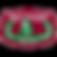 macquariefieldshigh-logo.png