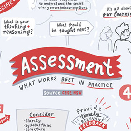 FREE - What Works Best in Practice 05 - Assessment