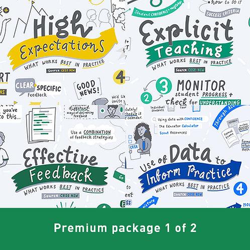 PREMIUM Package 1 of 2 - What Works Best in Practice