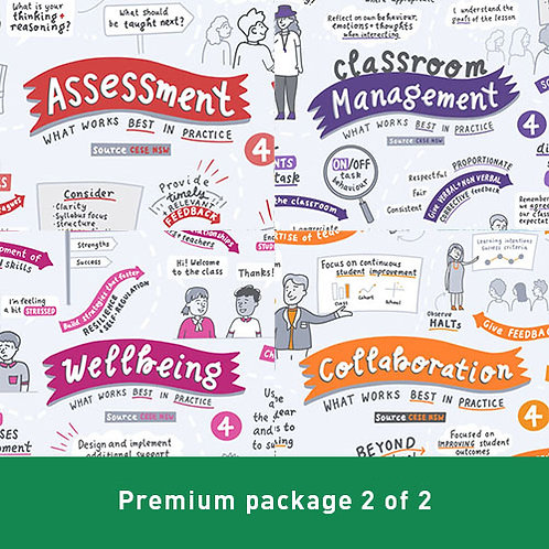 PREMIUM Package 2 of 2 - What Works Best in Practice
