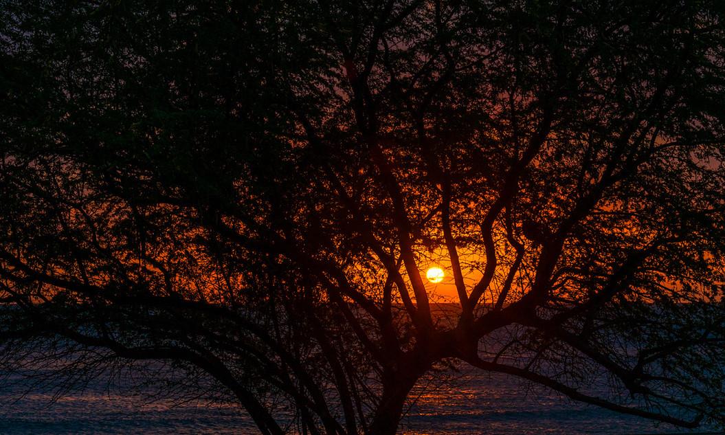 Timor_Leste_19.jpg
