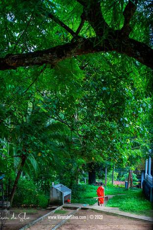 sri_lanka_welipillewa_purana_viharaya_07