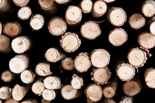 raw-sapling-walking-sticks.jpg