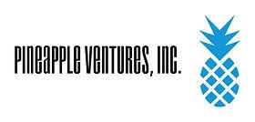 PVI Basic Logo.jpg