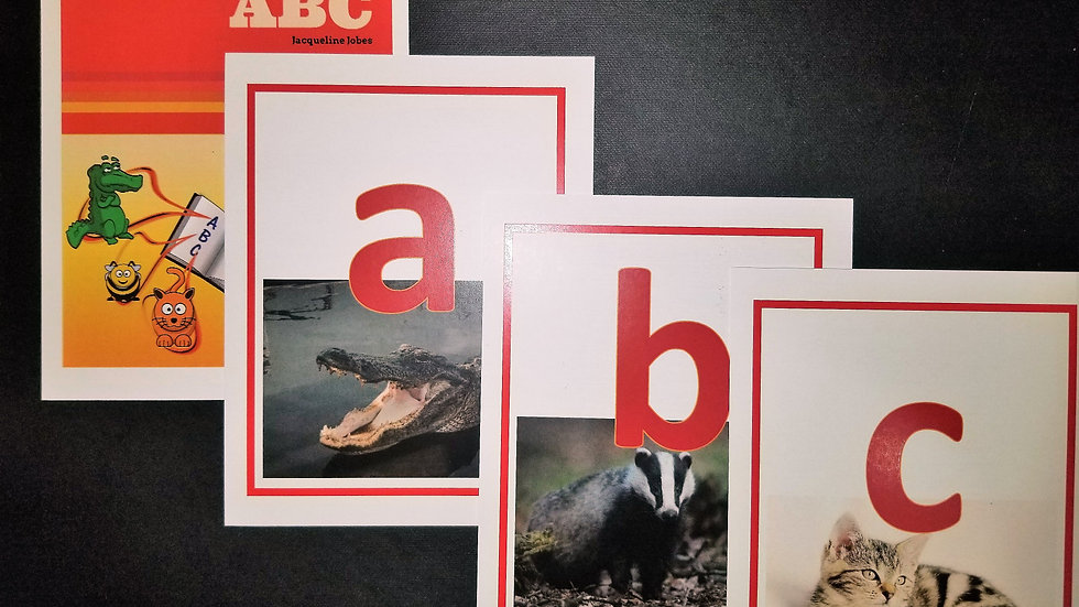 ABC Flashcards (Lower Case Letters)