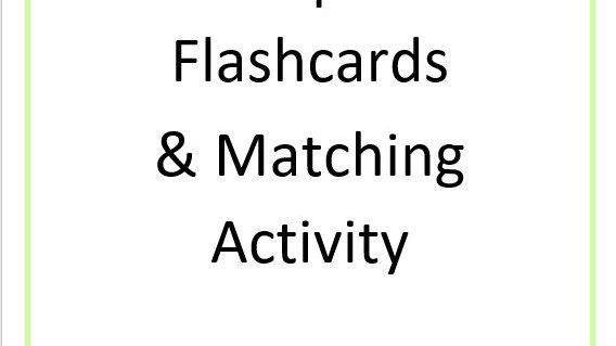 2 Dimensional Shapes Flash Cards & Matching Activity