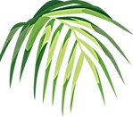 Tropical%20Leaf%20_edited.png