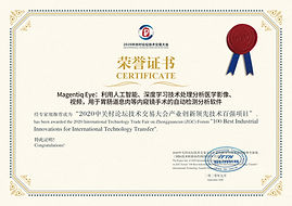 The honor certificate for the selected t