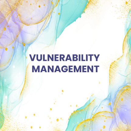 Vulnerablity Management