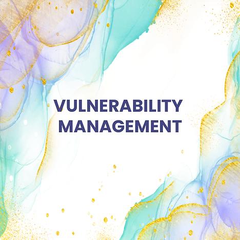 vulnerablity management-01.png