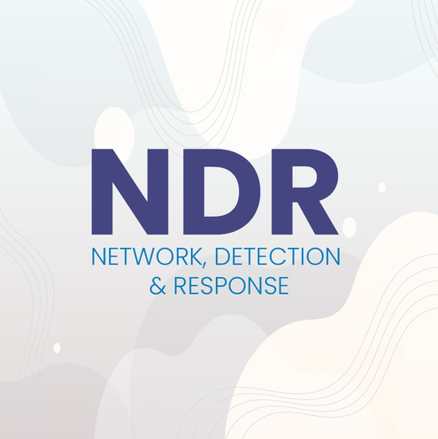 Network Detection and Response (NDR)
