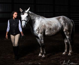 Horse LR 3.jpg