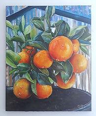 Bryony Oranges.jpg