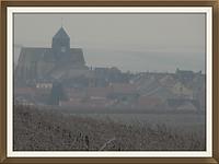 Vignes Barbonne Champagne église Paul Guillot - Bertrand Marcoult - Elise et David Massot