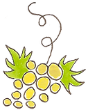 Sézanne - Champagne - Chardonnay