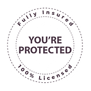 Website Insured Badge.png