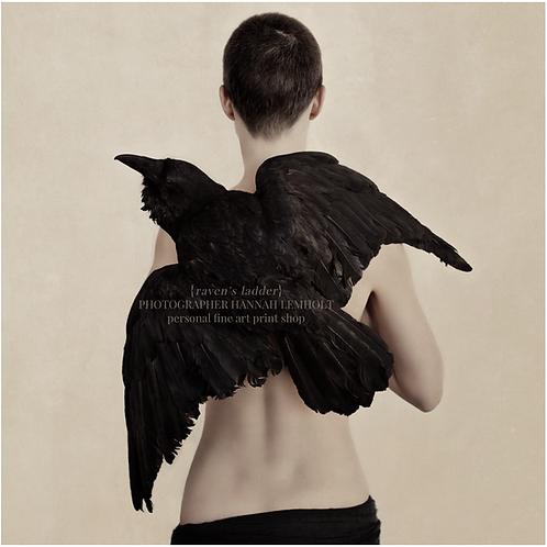 raven's ladder | colour version